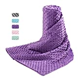 Acdyion Removable Duvet Cover 48x72 for Weighted Blankets-Super Soft Minky Dot with 8 Ties Cover Only (GrapePurple)