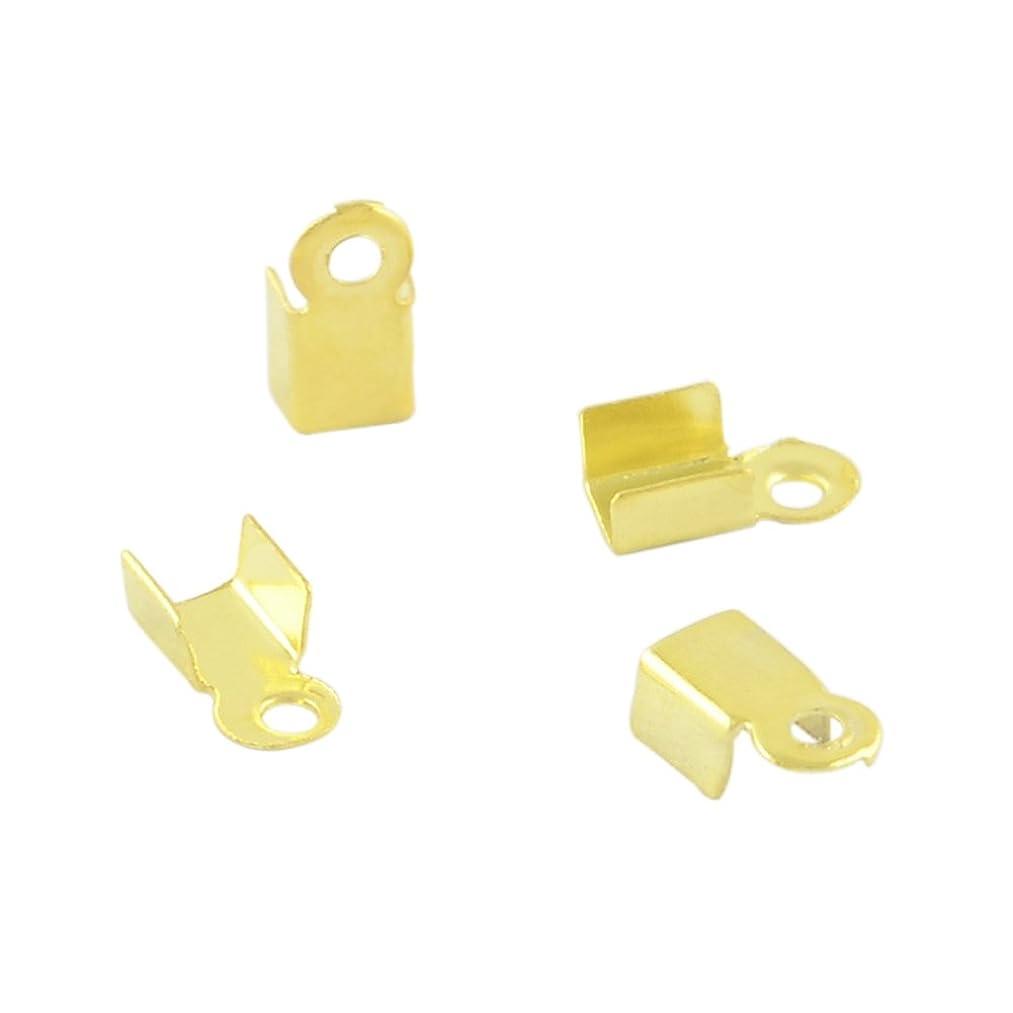 NBEADS 5000Pcs Iron Cord Ends, Golden, 6x3mm, Hole: 1mm