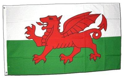 Flagge Wales - 60 x 90 cm
