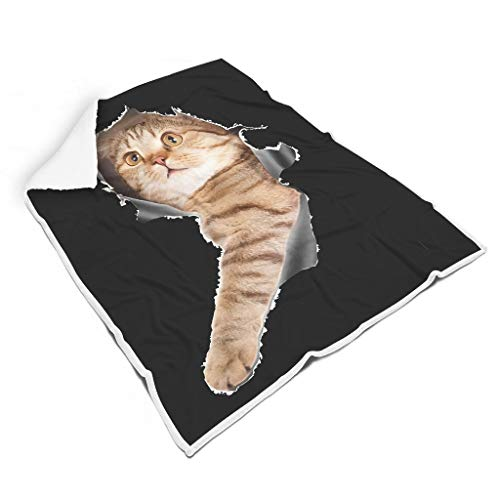 NeiBangM 3D Cat Peeking schattige sprei warm lichtgewicht therma soft queen size deken