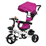 Kids Tricycle,5-in-1 Stroll 'N Trike,Toddler Tricycle with Push Handle...