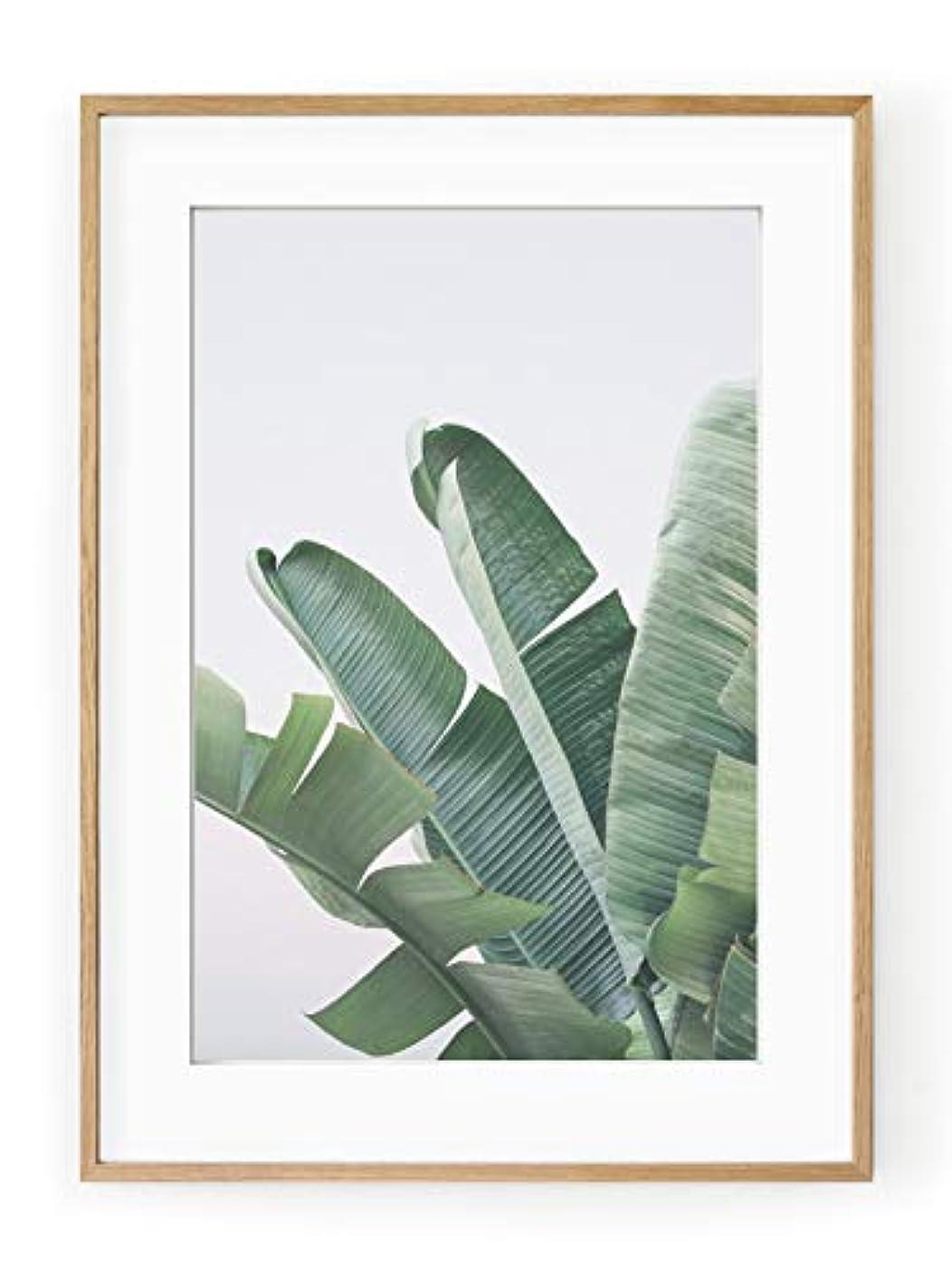 Banana Leaves Black Satin Aluminium Frame with Mount, Multicolored, 40x50