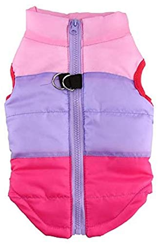 Idepet Pet Dog Cat Coat with Leash Anchor Color Patchwork Padded Puppy Vest Teddy Jacket Chihuahua Costume Pug Colthes (L,Rose Red)