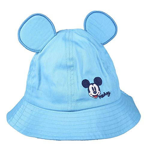 Cerd? Disney Mickey Hat