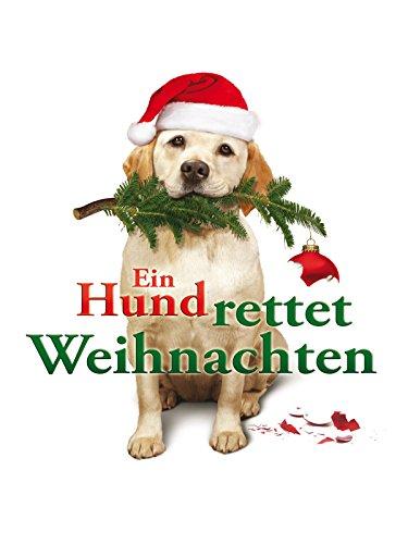 Ein Hund rettet Weihnachten