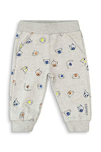 ESPRIT Baby-Jungen Jogginghose Hose, medium Grey 4|Gray, 56