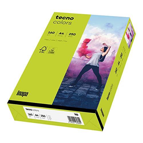 inapa farbiges Druckerpapier, buntes Papier tecno Colors: 160 g/m², A4, 250 Blatt, leuchtend grün, 2100011378_R