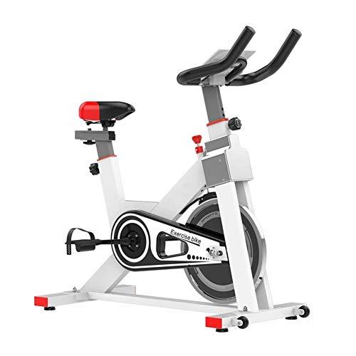 DFMD Bicicleta de Ejercicio Profesional para Interiores, Est