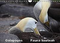 Galapagos. Fauna hautnah (Wandkalender 2022 DIN A4 quer): Die einzigartige Tierwelt auf Galapagos wird aus naechster Naehe gezeigt. (Monatskalender, 14 Seiten )