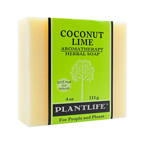 Plantlife Moisturizing Vegan Soap Bar with Natural Ingredients - Deep Cleanse for Body, Hands, Face - Ideal for Dry, Sensitive Skin - Coconut Lime - 4 oz