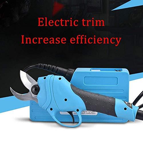 DHTOMC Branch Cutter - Tijeras eléctricas de 36 V de iones de litio, inalámbricas para jardín, tijeras de podar frutos y grasillas, económicas y cortadoras