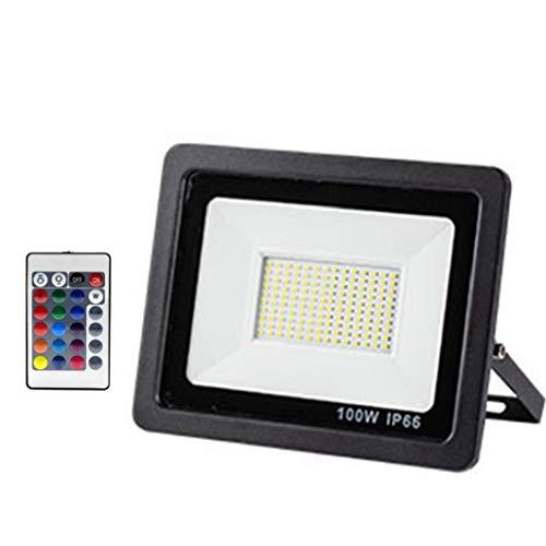 LAANCOO Spotlight luz LED Reflector al Aire Libre 100W LED de iluminación a Prueba de Agua para el jardín Patio Delantero del Garaje Pared del Patio