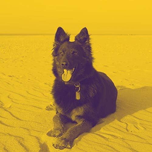 Dog Music ビンテージ