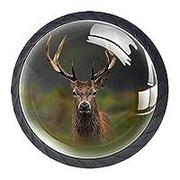 キャビネットハンドルノブドレッサー引き出し用4個カメラを見て鹿の刺す ドアノブクリスタルガラス