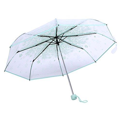 Paraguas Plegables Resistente al Viento, Paraguas Transparente Mujer, Paraguas plegables claros transparentes de 36 pulgadas con la flor de cerezo para el viento y la lluvia pesada(# Light Green)