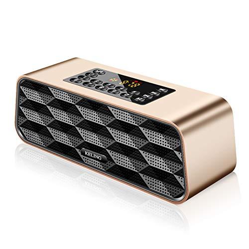 Altavoz portátil inalámbrico Bluetooth con Sonido y Bajos HD, 8H Playtime, Capacidad de la batería 2600mAh, Tarjeta de Memoria TF de Soporte (32G),Metallic