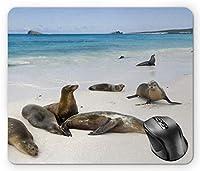 エクアドルのマウスパッド、ガラパゴス島アシカ砂浜で海の風景自然写真動物旅行多色マウスパッド