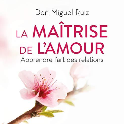 La maîtrise de l'amour: Apprendre l'art des relations