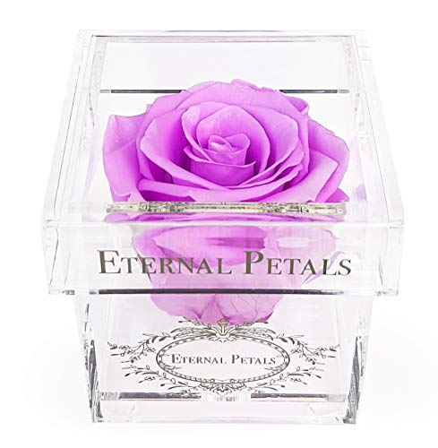 Eternal Petals A Rose That Lasts A Year - The Perfect Unique Gift for Women and Men, A Birthday Gift - White Gold Solo (Lilac)