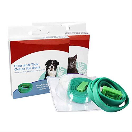 tiffan1990 Tamaño Ajustable Collar Antiparasitos Antipulgas para Mascota Pequeño Mediano Grandes y Gatos contra Pulgas Garrapatas y Mosquitos 8 Meses de Protección de Efectividad Repelente Perro