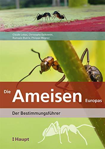 Die Ameisen Europas: Der Bestimmungsführer