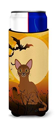 Caroline tesoros del Halloween gato Abisinio Michelob Ultra Hugger para Slim latas, puede, multicolor