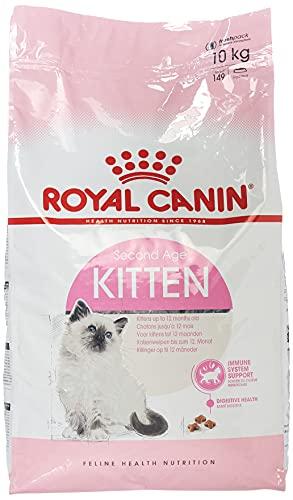 ロイヤルカナン FHN キトン 子猫用 10kg