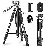Kamera Stativ, Sunfoto 160cm Leichtes Fotostativ mit 2 Schnellwechselplatte, Tragetasche, Handyhalterung für Smartphone DSLR SLR Canon Nikon Sony Olympus - schwarz