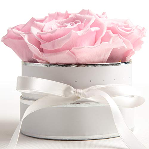 ROSEMARIE SCHULZ Heidelberg Flowerbox rund Infinity Rosen Rosa - Blumenbox in Weiß 4 konservierte Rosen Geschenk für Frauen