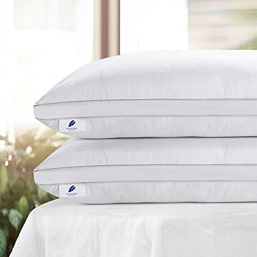 viewstar Almohadas Antiácaros e Antialérgico, Pack de 2 Almohadas 70x40cm Firmeza Media, 100% Microfibra, Almohadas para Camas, Pillow Certificado por Oeko-Tex