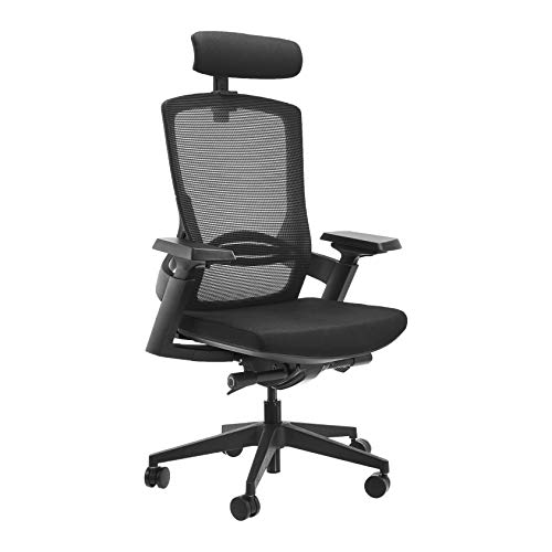 AmazonCommercial Ergonomic High-Back Executive Mesh Chair, with Adjustable Lumbar Support, Headrest and 3D Armrests