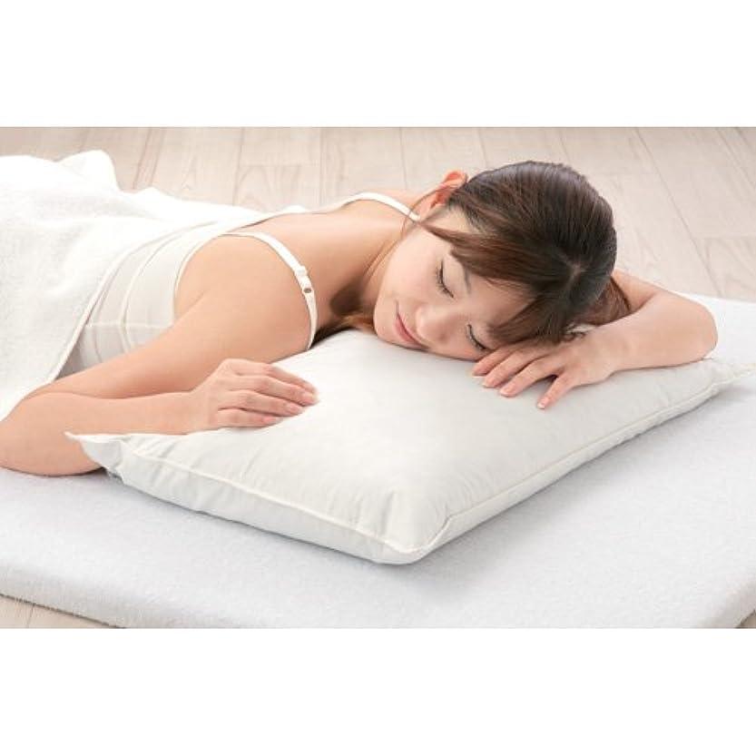 受粉する想定建てるクールパッド 枕用 (塩クールパッド COOL MAT ひんやりマット) ひえひえーる 環境にやさしいエコパッド
