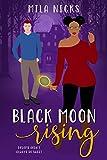 Black Moon Rising: A BWWM Paranormal Romance (Paranormal Hunters Book 2)