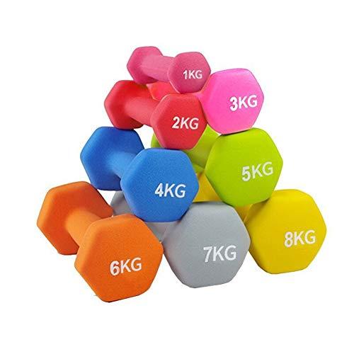 Shocly Hanteln Neopren Dumbbells Rutschsicher Kurzhanteln Unisex Heimfitnessgeräte Kurzhantel für Gymnastik Aerobic Pilates 1kg - 5kg (1pcs),pink1kg