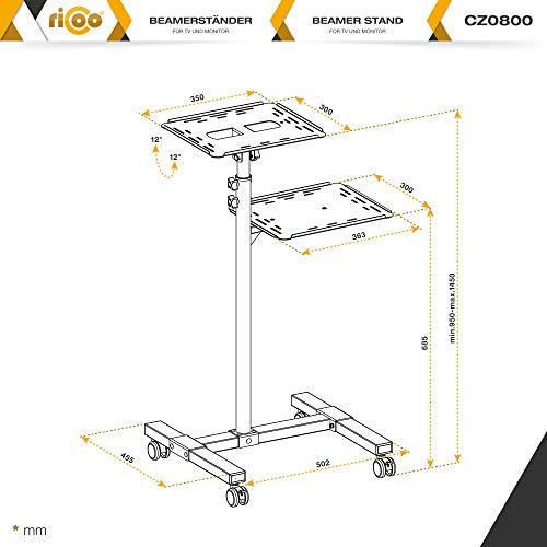 RICOO CZ0800
