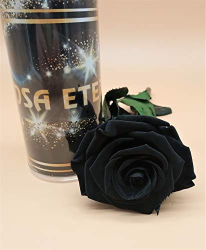 Almaflor Rosa eterna Negra Premiun. Gratis TU ENVÍO Prime. Rosa preservada Negra con Cabeza Premiun. Tarjeta dedicatoria y presentada en Tubo de conservación DE 55 CM. Hecho en España.