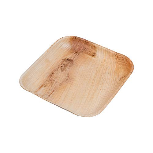 Palm Fridays Ecoware Square Disposable Plates - Compostable - 100% Natural - Chemical Free - USDA Certified (50, 6 Inch)