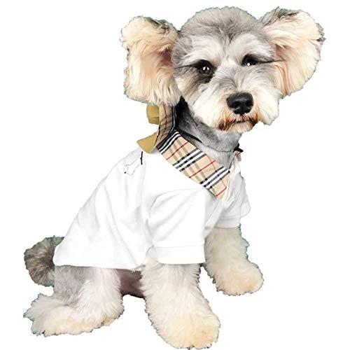 Kappa för husdjur, kläder, mode och skydd. Pet Supplies Hundkläder Hund Tee Dog märkeskläder Famous Brand Designer Pet Clothes sommartröja (Color : White, Size : Small)