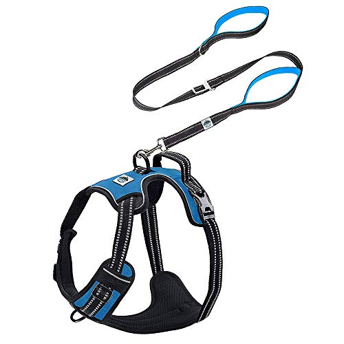 Elbert Mountain Dog Harness and Leash Set - No Pull No Choke, Two Handle Dog Leash w/Buckle - 3M Adjustable Reflective Dog Vest, Easy-Walk Harness, Dog Travel Accessories (Large, Blue)