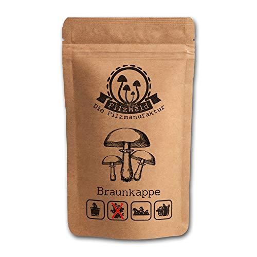 PilzWald Braunkappen Pilze züchten - 25 Pilzdübel für Stroh & Pilzbeet - Pilzbrut Pilzzuchtkultur - Bilder-Anbauanleitung - DIY Pilzzucht Braunkappe