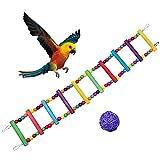 Maotrade Juguetes para PajarosColor de 10 Pasos Juguetes LorosY un Sepak Takraw Juguetes AgapornisUsado para Periquitos Canarios Gran Pájaro Loro Gris Africano Y Hámster
