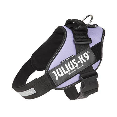 Julius-K9, 16IDC-PR-2, IDC Powerharness, dog harness, Size: 2, Purple