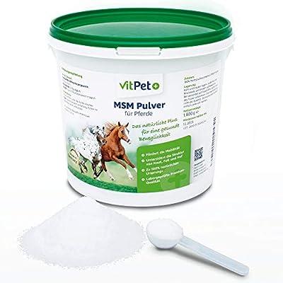 VitPet+ MSM Pferd – Premium MSM Pulver für Pferde im 1,8 kg Eimer inkl. Dosierlöffel (Methylsulfonylmethan- / Schwefel-Pulver für Pferde und Hunde)