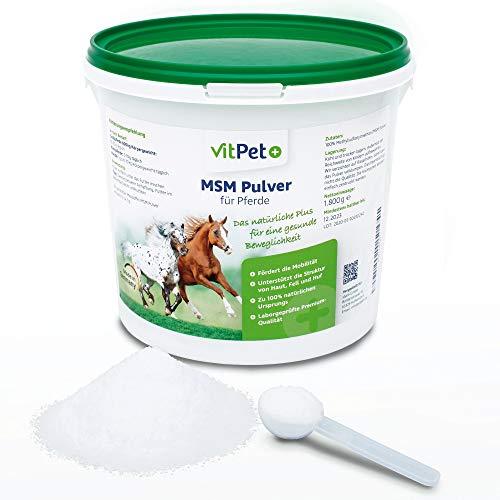 VitPet+ MSM Pferd – Polvo premium MSM para caballos en cubo de 1,8 kg con cuchara dosificadora (polvo de metilsulfonilmetano/azufre para caballos y perros)