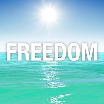 Freedom (feat. Thir13een)