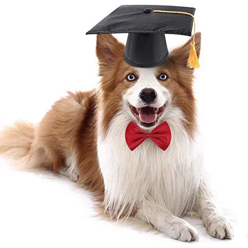 FAMKIT Juego de gorras de graduacin para mascotas con cuello de pajarita para perros pequeos con borla amarilla, disfraz de graduacin para perros y gatos