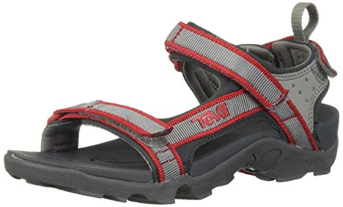 Teva Kids' K Tanza Sport Sandal, wild dove, 4 Medium US Big Kid