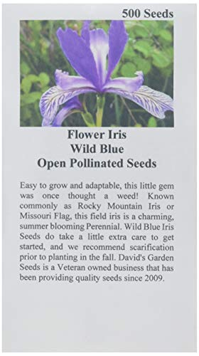 David's Garden Seeds Flower Iris Wild Blue MIS135OK (Blue) 500 Open Pollinated Seeds