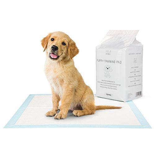 EVERANIMALS Empapadores Perros - Toallitas de adiestramiento Perros- Máxima absorción (200 Unidades)