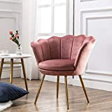Comfy Upholstered Lotus Vanity Chair, Velvet Accent Armchair Single Sofa Gold Plating for Living Room/Bedroom(DustyRose Pink)